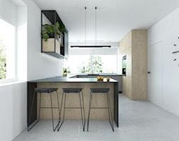 Projekt 49 - Kuchnia, styl minimalistyczny - zdjęcie od PASS architekci - Homebook