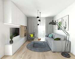 Projekt 46 - Salon, styl nowoczesny - zdjęcie od PASS architekci - Homebook