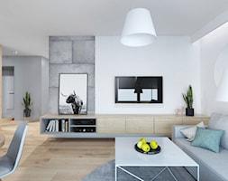 Projekt 6 - Salon, styl nowoczesny - zdjęcie od PASS architekci - Homebook