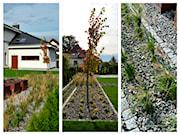 PracowniaDabrowska - Architekt i projektant krajobrazu