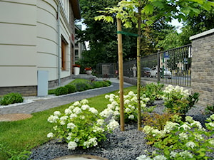 Nowoczesny, elegancki ogród. - Średni ogród przed domem, styl minimalistyczny - zdjęcie od PracowniaDabrowska