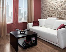 Kamień dekoracyjny MADERA - Mały czerwony salon, styl nowoczesny - zdjęcie od STEGU