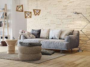Kamień dekoracyjny Creta - Średni biały beżowy salon z bibiloteczką, styl skandynawski - zdjęcie od STEGU