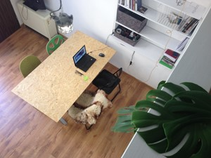 i.studio - Architekt / projektant wnętrz