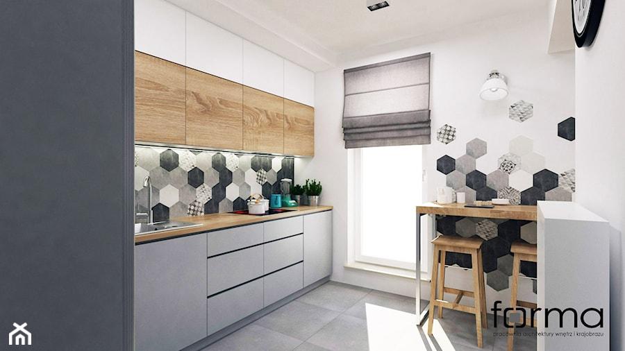 MIESZKANIE DĄBIE PARK - Średnia zamknięta biała szara kuchnia jednorzędowa, styl eklektyczny - zdjęcie od FORMA - Pracownia Architektury Wnętrz