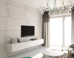 MIESZKANIE WIŚLANE TARASY - Mały szary salon, styl nowoczesny - zdjęcie od FORMA - Pracownia Architektury Wnętrz i Krajobrazu