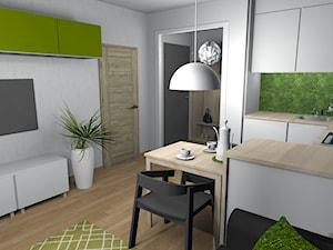 Wiosenne 16m2 Salon Kuchnia Projekt Wnetrza Mieszkalnego Pracownia Kardamon Homebook