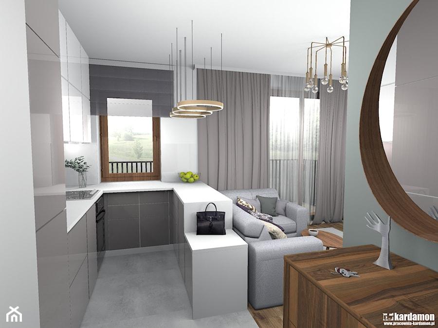 Elegancki Salon Z Wydzieloną Sypialnią 26m2 średnia