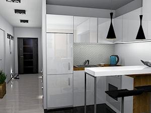 Salon z aneksem kuchennym 14m2