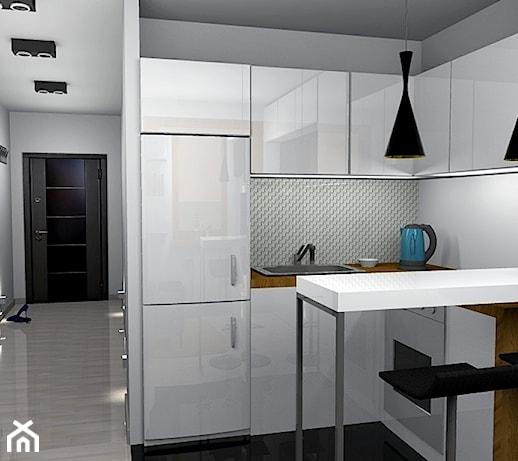 Salon Z Aneksem Kuchennym 14m2 Projekt Wnetrza Mieszkalnego Pracownia Kardamon Homebook