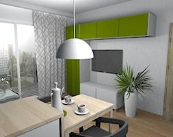 Wiosenne 16m2 Salon Kuchnia Projekt Wnętrza