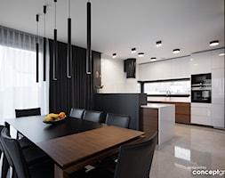 Kuchnia+i+Jadalnia+-+zdj%C4%99cie+od+Conceptgroup