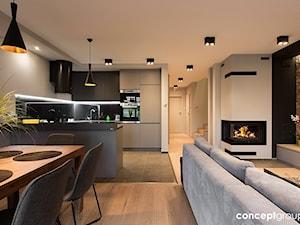 Dom w Rudzie Śląskiej - Realizacja - Mała otwarta szara czarna kuchnia w kształcie litery g w aneksie, styl nowoczesny - zdjęcie od Conceptgroup