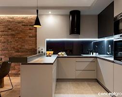 Kuchnia+-+zdj%C4%99cie+od+Conceptgroup