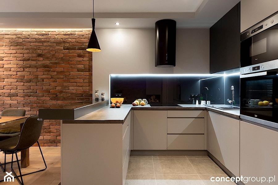 Dom w Rudzie Śląskiej - Realizacja - Duża otwarta kuchnia w kształcie litery u w aneksie, styl nowoczesny - zdjęcie od Conceptgroup
