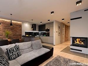 Dom w Rudzie Śląskiej - Realizacja - Duży biały salon z kuchnią z jadalnią, styl nowoczesny - zdjęcie od Conceptgroup