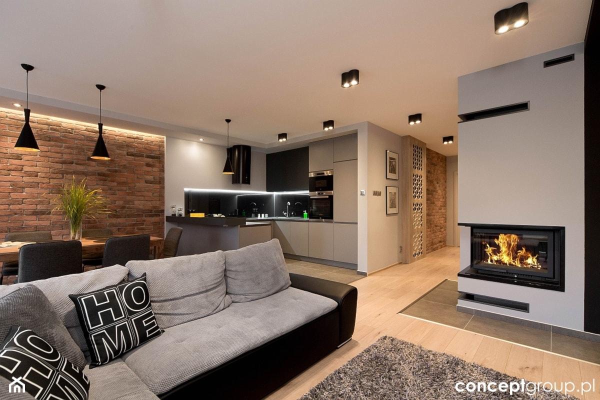 Dom w Rudzie Śląskiej - Realizacja - Duży biały salon z kuchnią z jadalnią, styl nowoczesny - zdjęcie od Conceptgroup - Homebook
