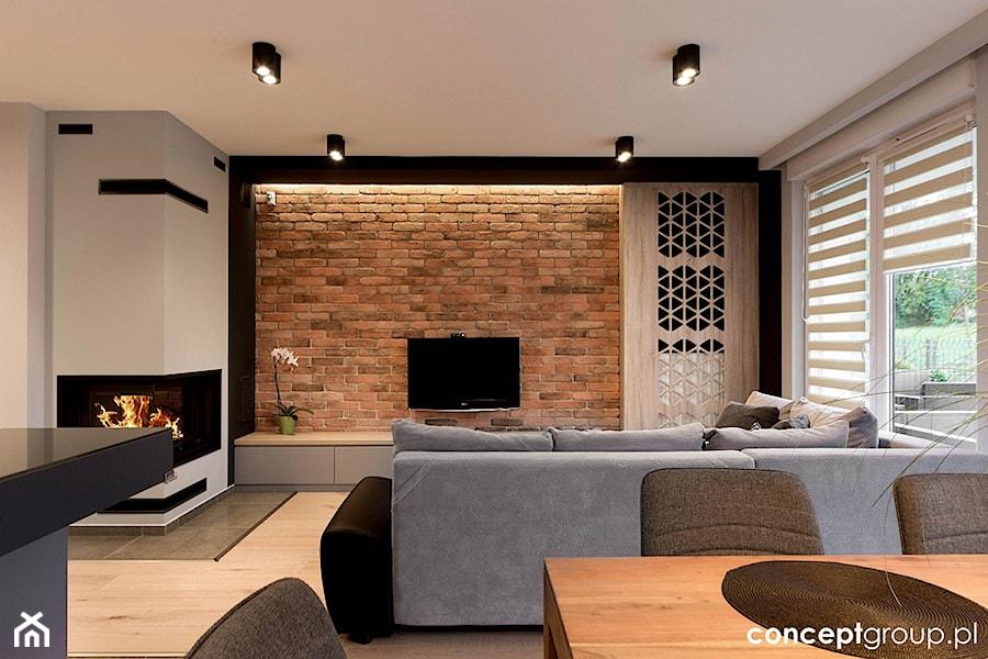 Dom w Rudzie Śląskiej - Realizacja - Średni biały salon, styl nowoczesny - zdjęcie od Conceptgroup