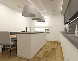 Nowoczesna+kuchnia+w+apartamencie+w+Tomaszowie+Mazowieckim+-+zdj%C4%99cie+od+design+me+too