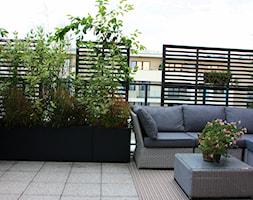 Zielony+taras+w+apartamentowcu+-+zdj%C4%99cie+od+Miejskie+Ziele