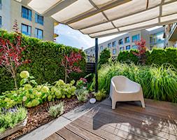 Ogród kompaktowy - zdjęcie od Miejskie Ziele - Homebook