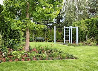Nawożenie trawnika – kiedy, czym i jak nawozić trawnik?
