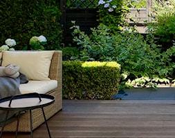Ogród w bieli i zieleni - zdjęcie od Miejskie Ziele - Homebook