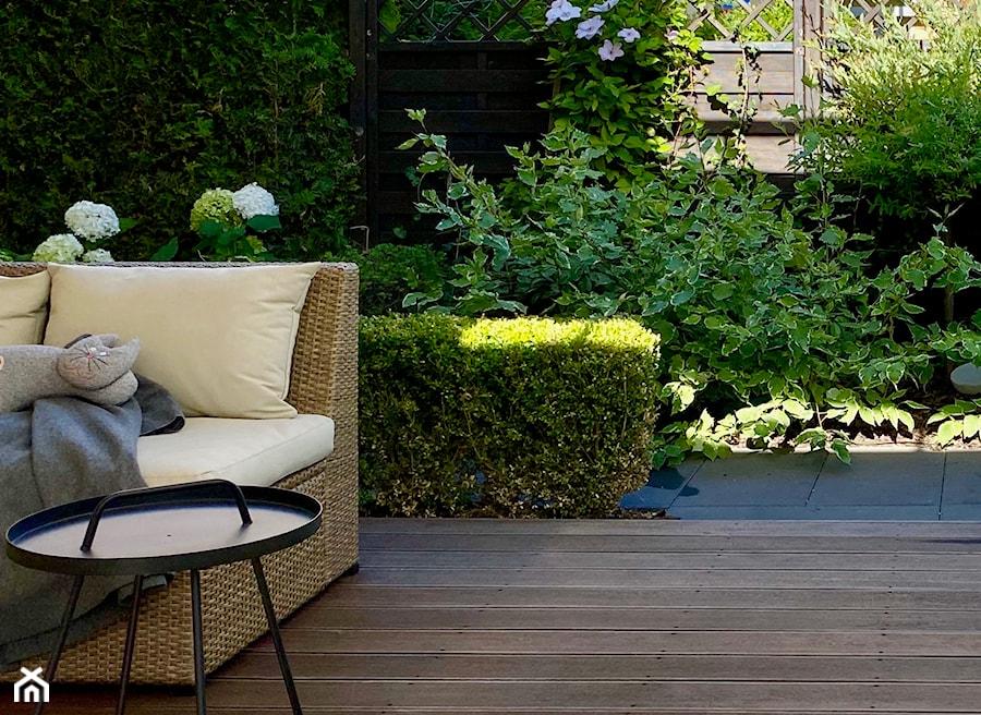 Ogród w bieli i zieleni - zdjęcie od Miejskie Ziele