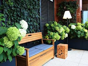 Zielony taras w apartamentowcu