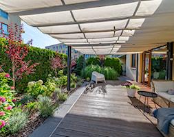 Ogród na parterze - zdjęcie od Miejskie Ziele - Homebook