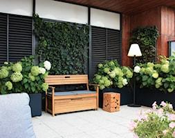 Zielony taras w apartamentowcu - zdjęcie od Miejskie Ziele - Homebook