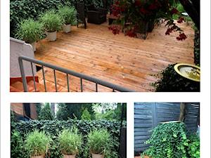 Garden staging/ metamorfoza ogrodu salonu Degażeria - zdjęcie od Miejskie Ziele