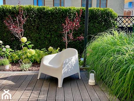 Aranżacje wnętrz - Ogród: Ogród bez trawnika - Miejskie Ziele. Przeglądaj, dodawaj i zapisuj najlepsze zdjęcia, pomysły i inspiracje designerskie. W bazie mamy już prawie milion fotografii!