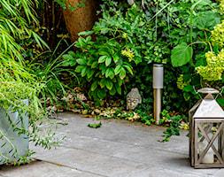 Egzotyczne ozdoby ogrodowe - zdjęcie od Miejskie Ziele - Homebook