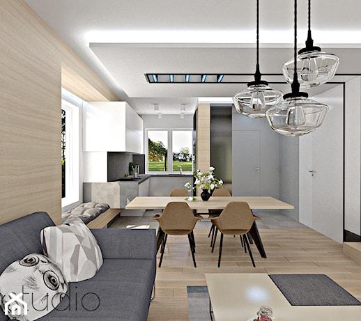 Projekt Salonu Z Aneksem Kuchennym 20m2 Pomysły Inspiracje Z Homebook