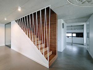 WNĘTRZE DOMU POD ŁODZIĄ - Duże szerokie schody jednobiegowe drewniane - zdjęcie od BASK grupa projektowa