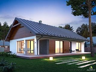Projekt domu ENDO