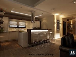 Dom IV koncepcja projektowa