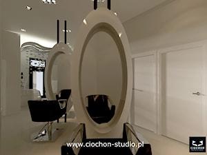 Projekt koncepcyjny salonu Fryzjerskiego - II