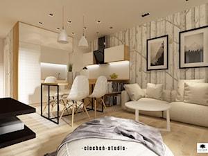 Mieszkanie pod wynajem w Krakowie - Zabłocie Concept House