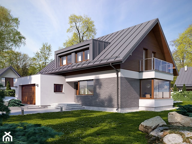 Limbo - projekt domu