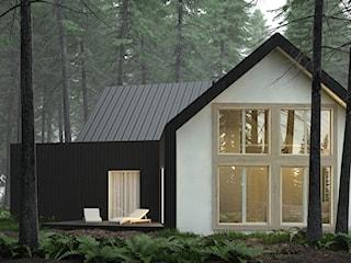 Dom czarno-biały