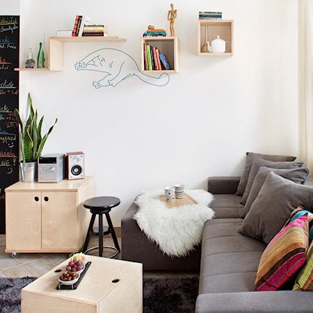Poduszki Dekoracyjne Na Kanapę Pomysły Inspiracje Z Homebook