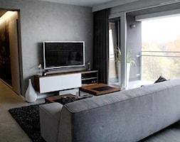 POZNAŃ | Apartament - Salon, styl nowoczesny - zdjęcie od dekoratorka.pl - Homebook