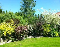 COŚ DLA CIAŁA COŚ DLA DUSZY COŚ DLA OKA - Średni ogród za domem - zdjęcie od Marlena Hein