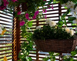 Nasza oaza - Mały taras z przodu domu z tyłu domu - zdjęcie od Iwona KD