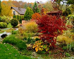 ogród jesienią - zdjęcie od Franciszek Grzegoszczyk