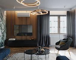 Mieszkanie na Poznańskiej, Kraków - Salon, styl nowoczesny - zdjęcie od Przestrzenie - Homebook