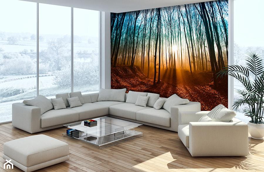 Fototapety ścienne – galeria inspiracji - Duży biały kolorowy salon - zdjęcie od DecoMania.pl