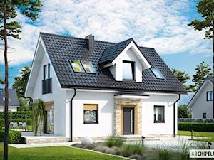 Projekt domu Witek